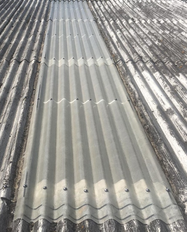 Roof Repair Work and Translucent Rooflight Replacement at a Factory in Sheerness Kent
