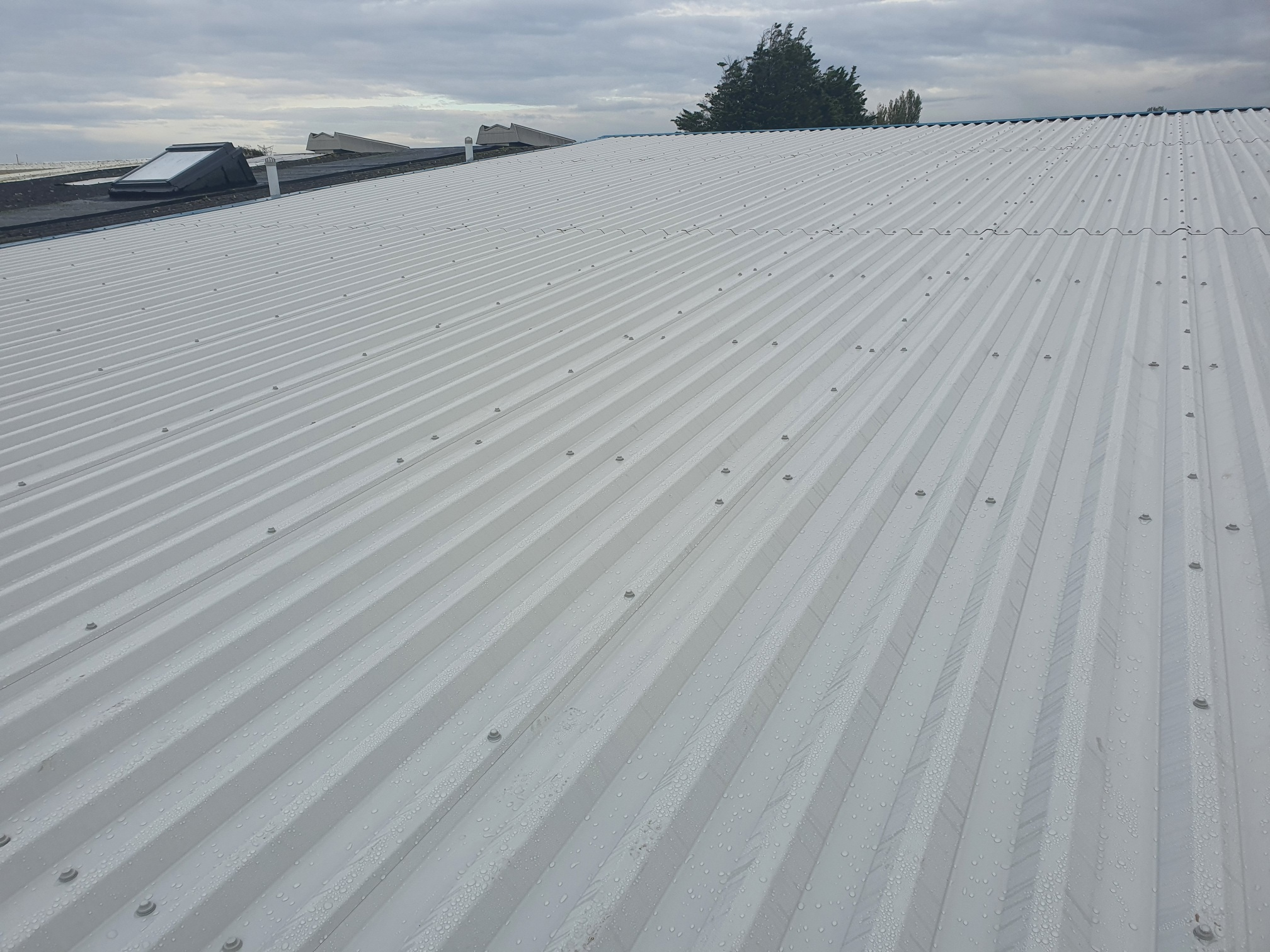 Warehouse and office over roofing in Worthing West Sussex